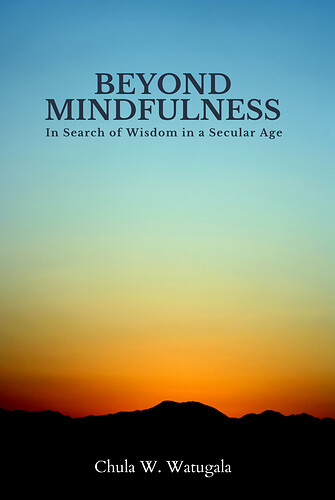 Beyond Mindfulness Paperback Cover 3