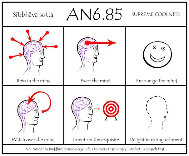 AN6_85_rev2