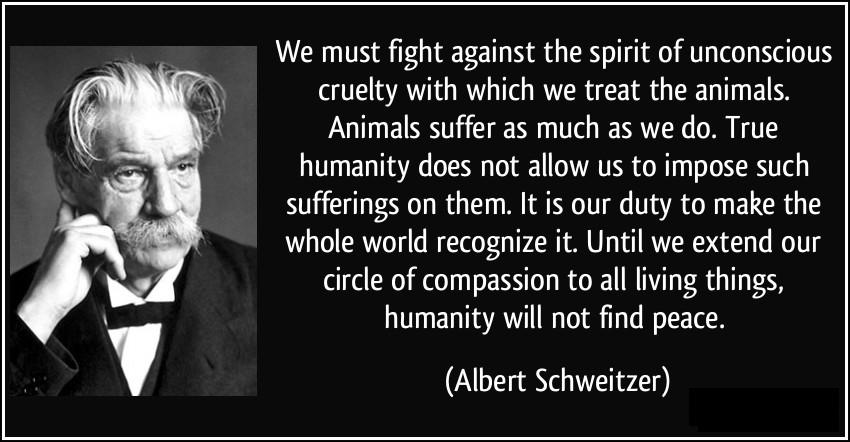 Albert-Schweitzer-quote1
