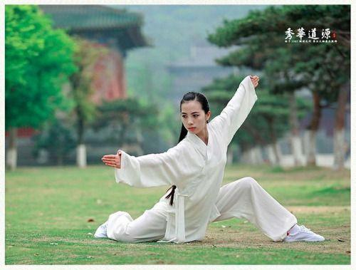 617197ac92c4f774fd432e78ff4a1f87--shotokan-karate-tai-ji